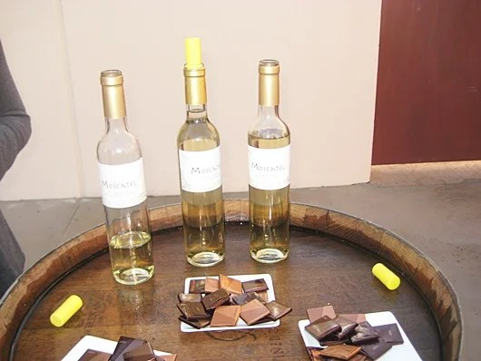 Tasting sweet wine and chocolate, what could be better?!