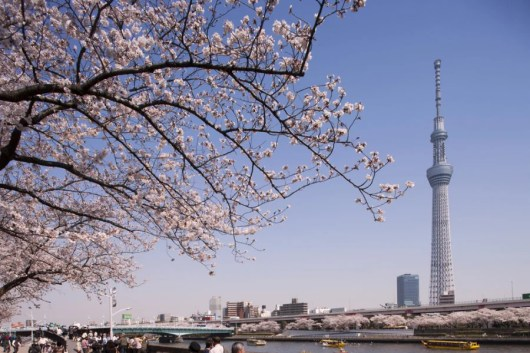The Tokyo Skytree is a wonderful place to catch the sunset over Mt. Fuji. Courtesy Shutterstock.
