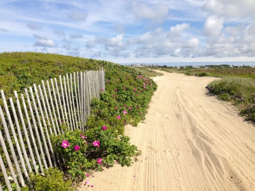 When in Nantucket, a stroll along the dunes is in order.