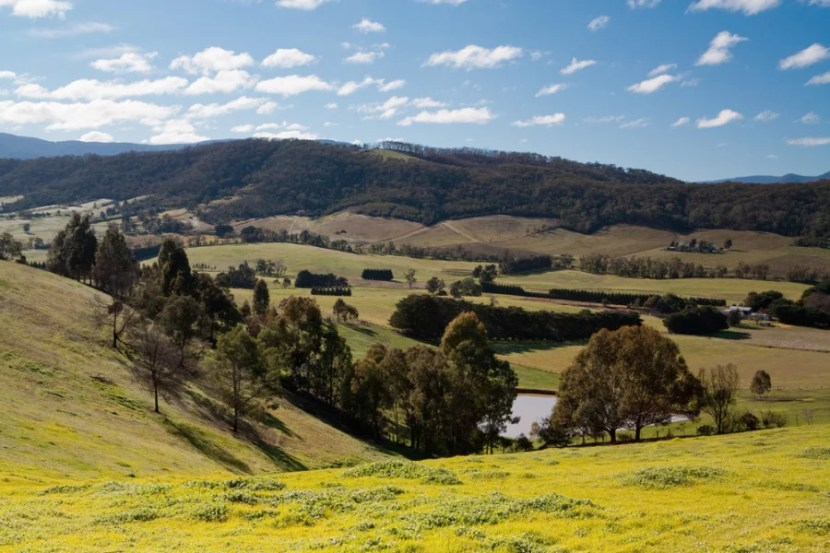 Drive a convertible through the hills of Australia's Yarra Valley, stopping at breweries and wineries along the way. Photo courtesy of Shutterstock.
