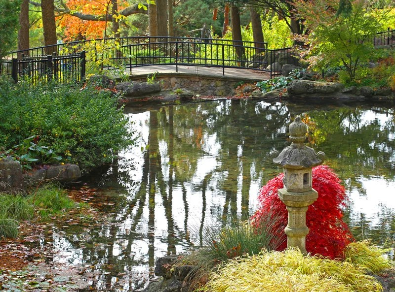 Fall looks good on Tornoto, especially in its High Park. Photo courtesy of Shutterstock.