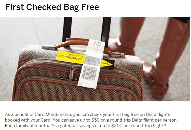 The Amex Gold Delta card gets you a free checked bag for you and up to eight of your travel companions!