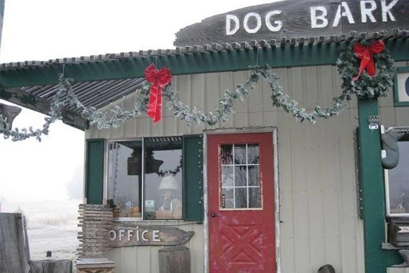 The office at the Dog Bark Park Inn.