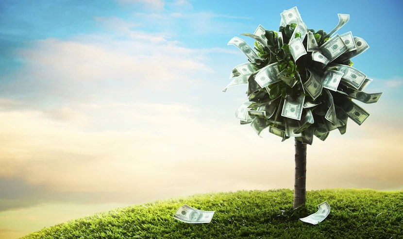 Money doesn't grow on trees, so don't expect unreasonable compensation from airlines. Photo courtesy of Shutterstock.