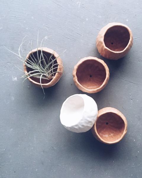 Anna Eaves Planters