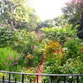 riverside-park3