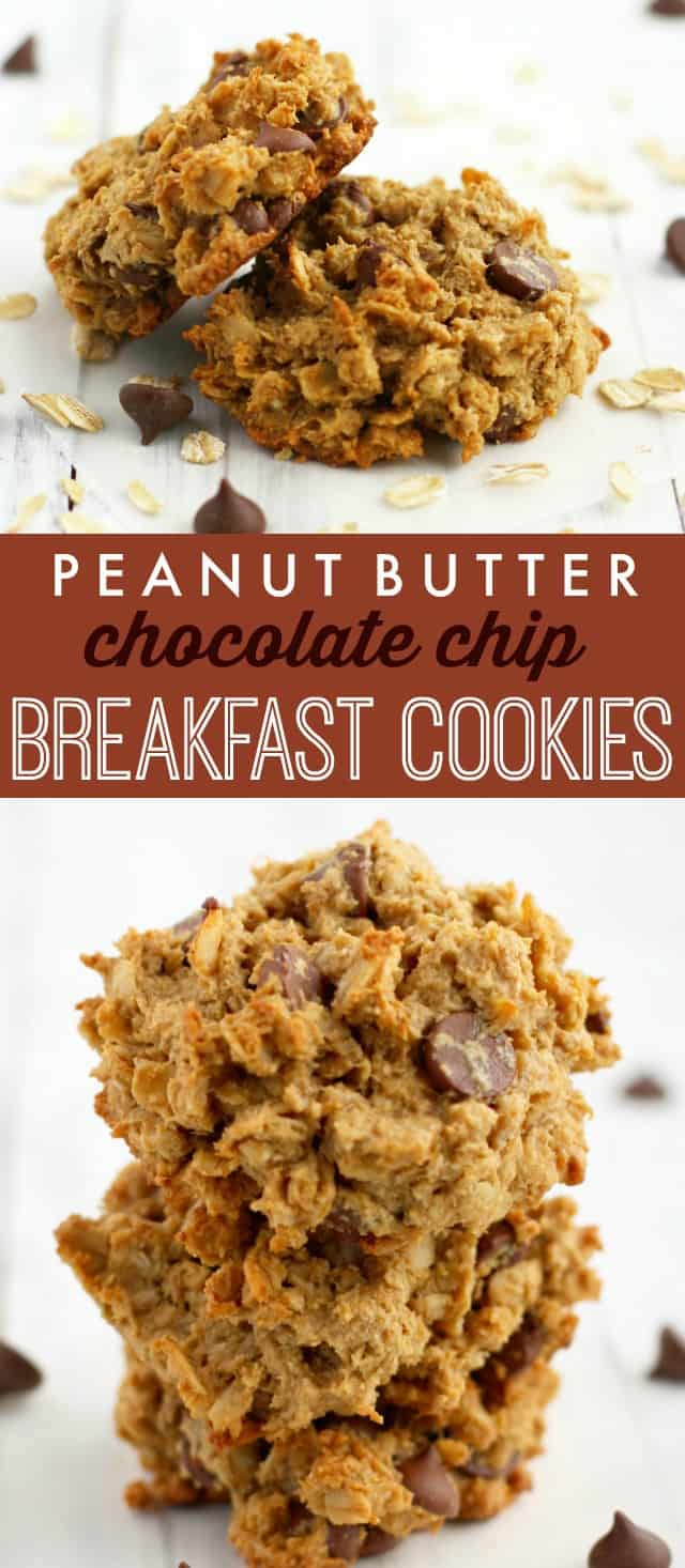 Peanut Butter Chocolate Chip Breakfast Cookies. - The
