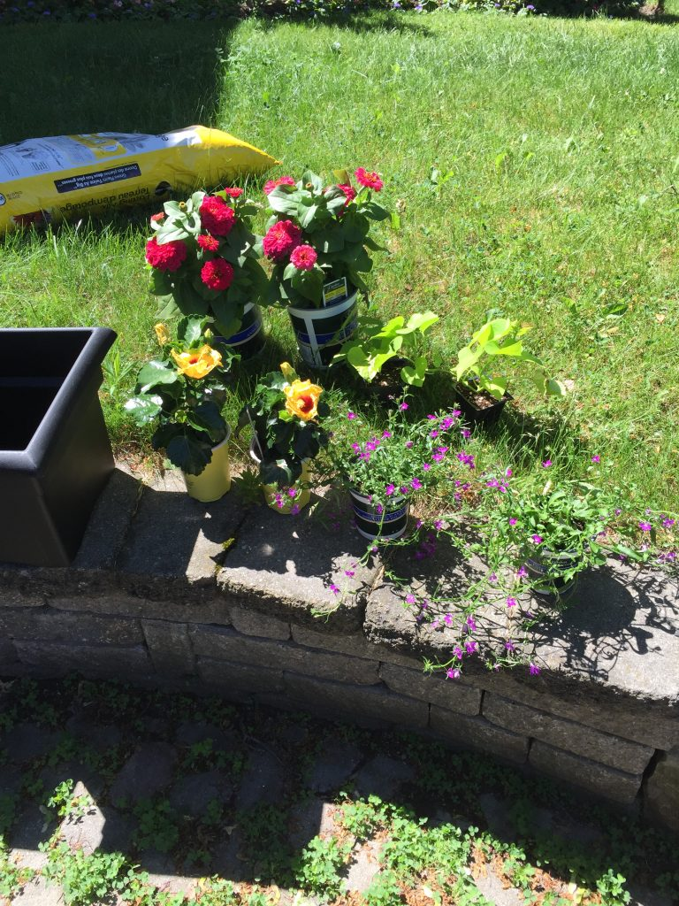 Ready to plant an easy container garden