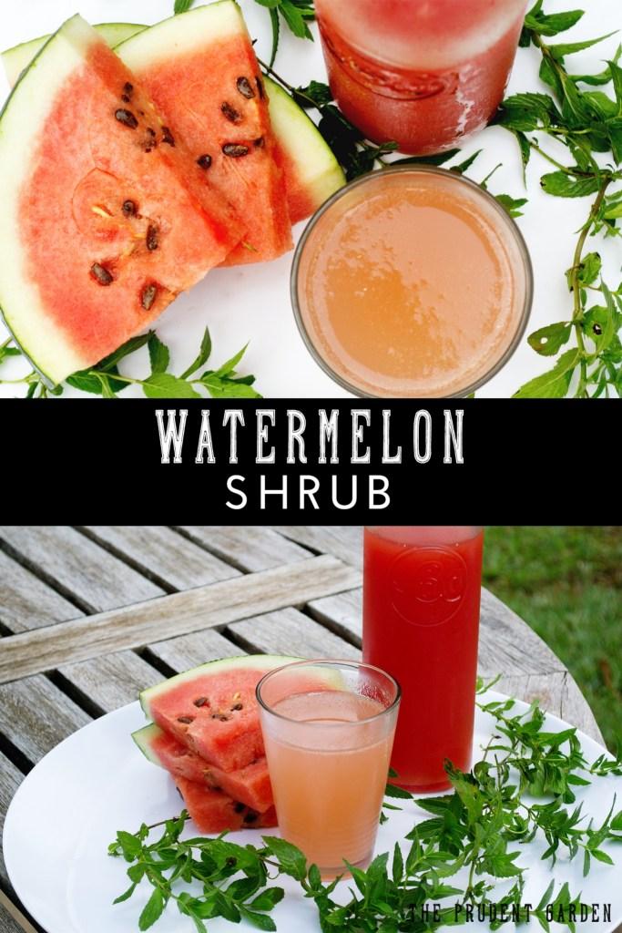 Drinking Vinegars: Watermelon Shrub