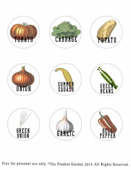 Hometalk: DIY Plant Labels