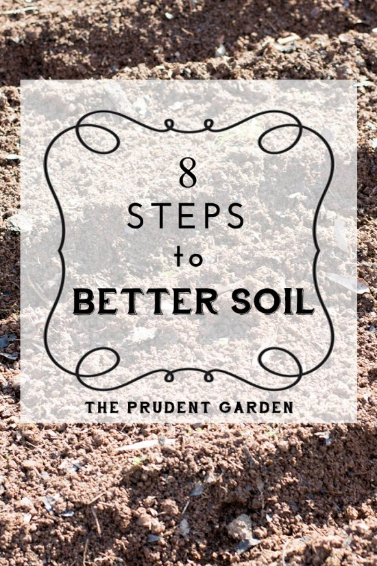 8 Steps To Better Soil