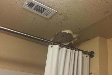 Photo courtesy of Laura Brunden. Mold forms around the damaged ceiling in the West Village apartments.