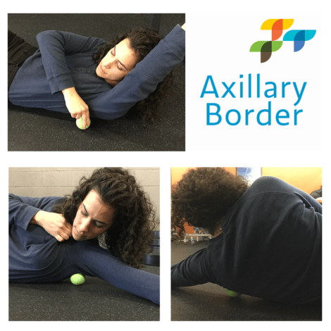 axillary-border-exercise