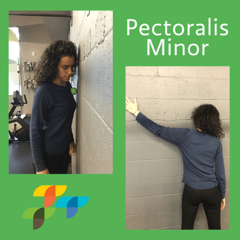 pectolaris-minor-treatment