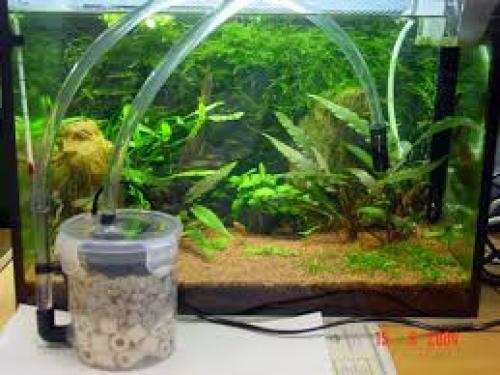 Best Aquarium Filter reviews