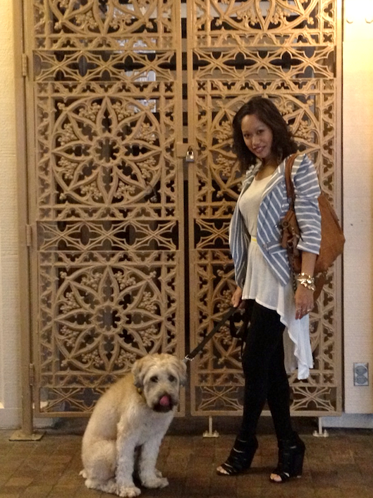 Bamboo Sky High Low Tunic, Emami Leggings, OOTD, Hawaii Kai, Wheaten Terrier