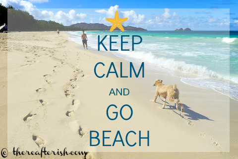 thereaferish, keep calm and go beach, hawaii, Sherwood Forest Beach, Waimanalo Beach, Wheaten Terrier