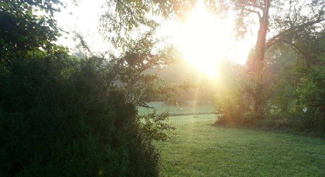morning-at-the-refuge
