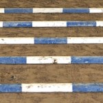 5 blue and white wood trot poles lined up as a grid beginner tot poles