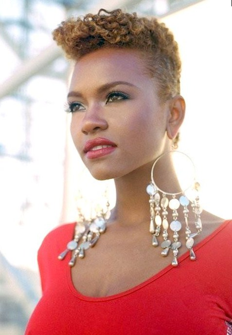Short black hairstyles - Coupe afro femme ...