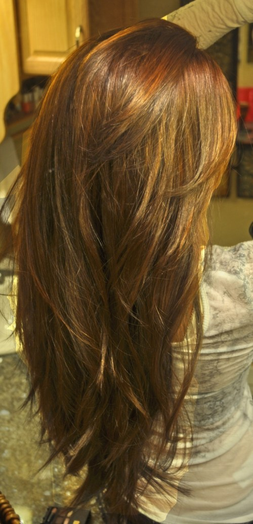 Hairstyles Long Thick Hair : long layered haircut for thick hair