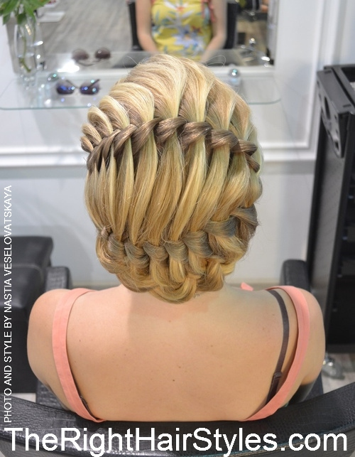 formal braided updo