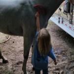 Amanda helping after I washed Mistique