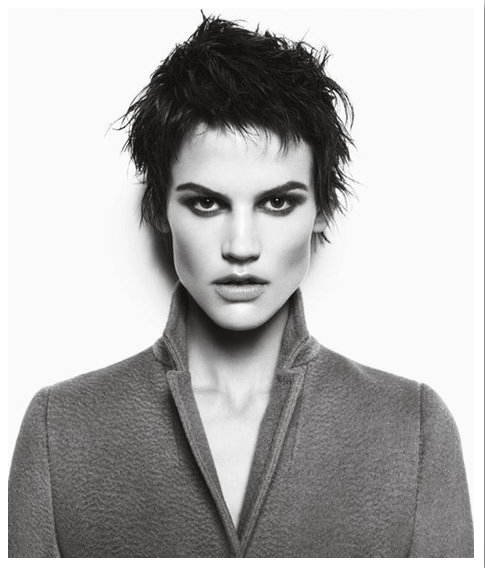 screen shot 2012 08 14 at 2 48 05 pm AD CAMPAIGNS SHOW A B&W PERSPECTIVE FOR FALL 2012   The Sche Report / Margaret Sche