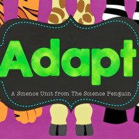 Time to Teach: Animal Adaptations