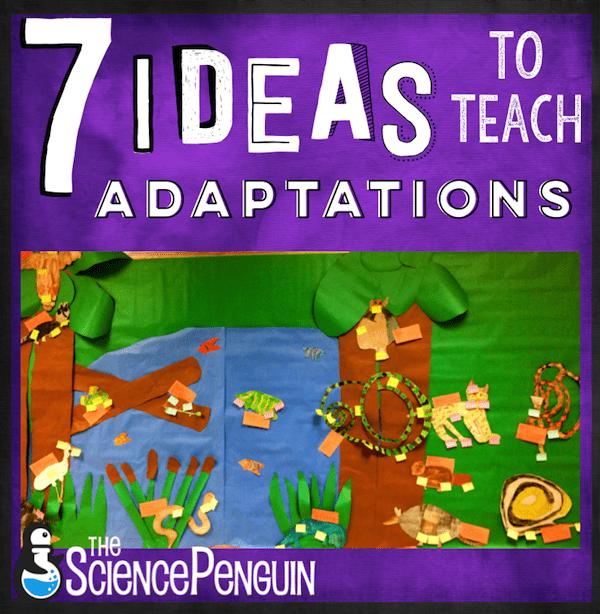 7 Ideas to Teach Animal Adaptations
