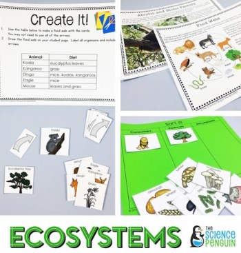 Ecosystems Science Stations Unit- focuses on abiotic and biotic factors and food webs