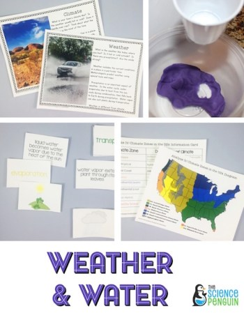Weather, Climate, and Water Cycle Science Stations Unit
