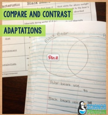 Compare and contrast adaptations