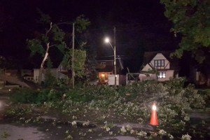 City of Cornwall Temporarily Suspends Tipping Fees For Tree Debris