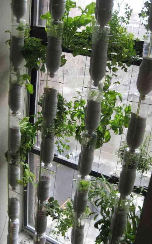 Medium Of Homemade Indoor Garden