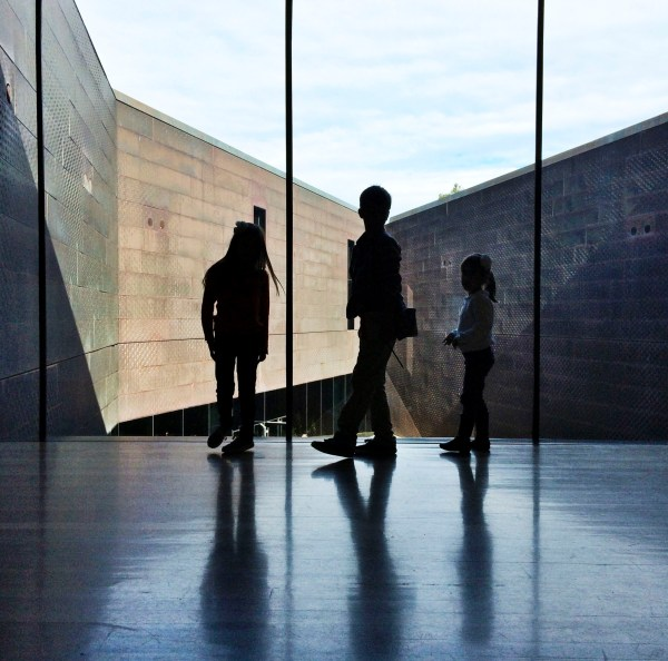 De Young Museum | the simple proof