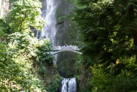 Waterfall Alley | Columbia River, Oregon