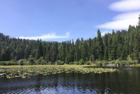 Quail Lake | Lake Tahoe