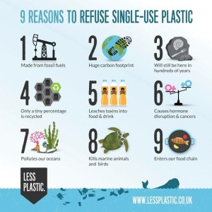I don't really have art for this post, so here's a cute graphic I found online to help us reduce our single-use plastic consumption.