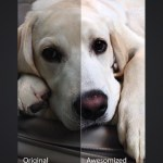 Camera Awesome Comes to iPad screenshot