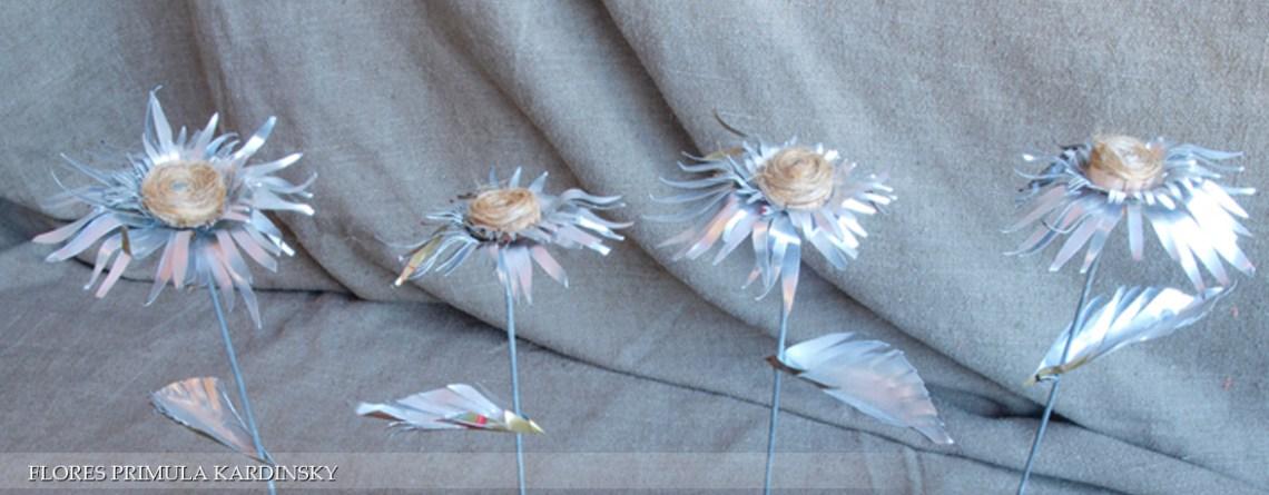 Flores Primula Kardinsky