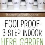 Gardening with Kids: Easy 3-Step Indoor Herb Garden