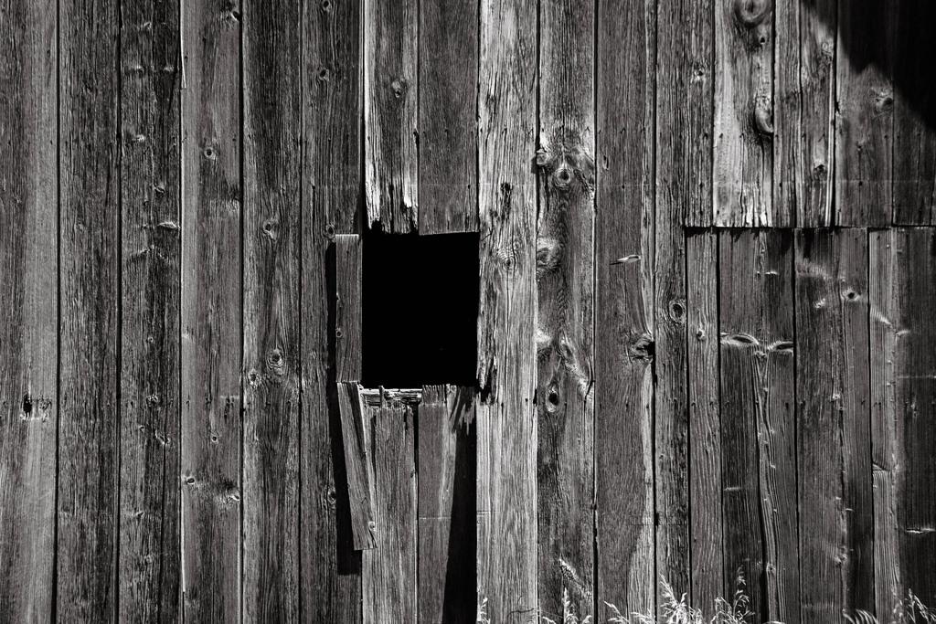 bw-barn-widow-old-wood