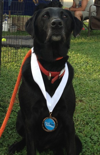 Proud puppy!