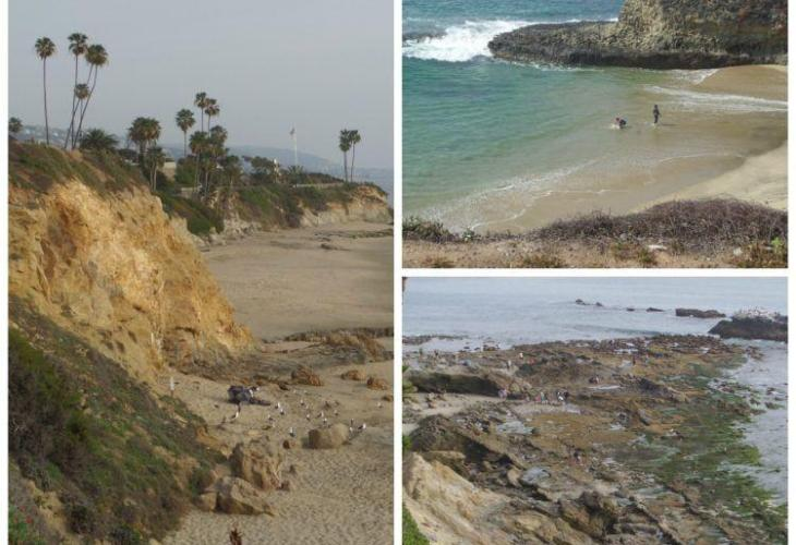 California Dreaming: Laguna Beach Attractions! Beaches, Art Galleries, a mammal center, boutiques and delicious restaurants all make this the perfect travel destination!