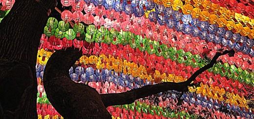 Seoul, Korea: Jogyesa Temple, Tree of Lanterns