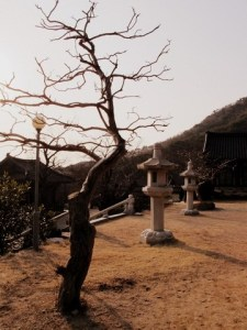Eunhasa Temple, Gimhae, Korea