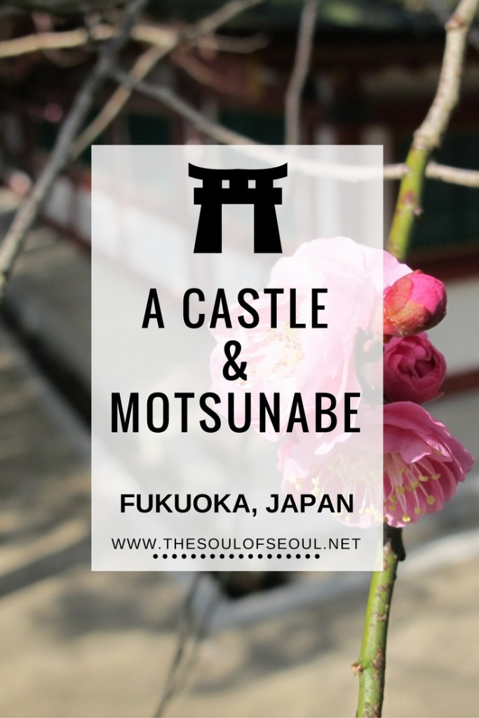 A Castle & Motsunabe, Fukuoka, Japan: Our third day was spent stopping in manga shops, seeing the Fukuoka castle ruins and spring flowers and eating motsunabe. Three days in Fukuoka, Japan. A weekend stopover in Japan. Highlights & What to See!