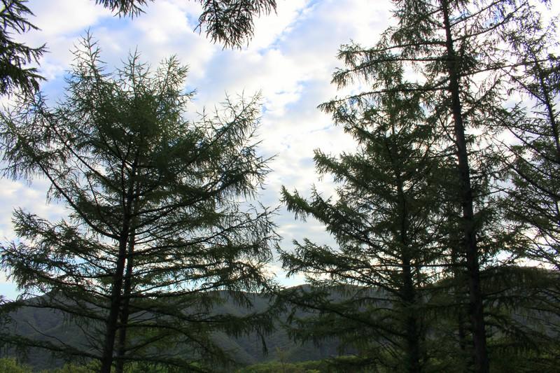 Munboksan Camping Ground, Ulsan, Korea