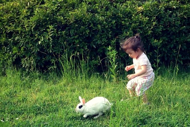 Pyeongwha (Peace) Park, World Cup Park, Seoul, Korea: Baby & a Bunny